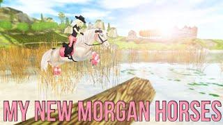 getlinkyoutube.com-My new Morgan horses ♥Star Stable Online♥