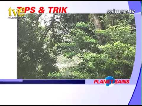 Salman TV: Planet Sains 'Banjir Rob' 3/3
