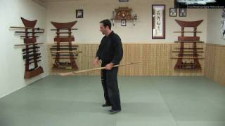 Rokushaku Bo Introduction - part 3 of 3 - Ninja Training Video Blog