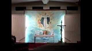 getlinkyoutube.com-A miracle caught on tape during adoration