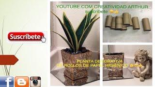 getlinkyoutube.com-planta echa con rollos de papel higiénico