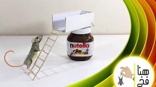 getlinkyoutube.com-كيف تصنع مصيدة فاران بـ( نوتيلا )