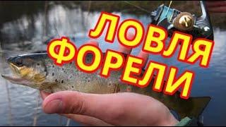 getlinkyoutube.com-Ловля форели в карпатских реках, выпуск №73 (RUS)