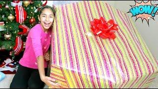getlinkyoutube.com-Opening a Giant Christmas Present What I got for Christmas B2cutecupcakes