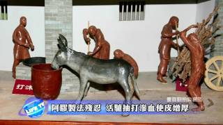 getlinkyoutube.com-全球動物救援運動 - 89 「阿膠」殘忍的補血藥品