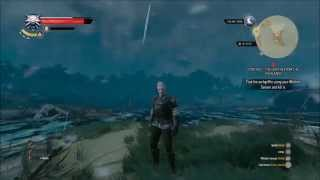 getlinkyoutube.com-the witcher 3 xp glitch for lower levels