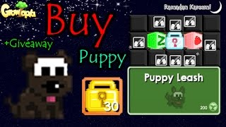 getlinkyoutube.com-Growtopia | Puppy Leash | Giveaway 'Donate 500 World Lock'