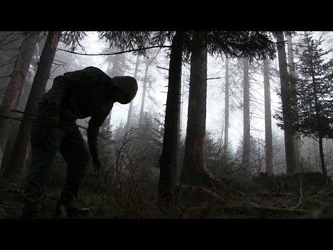 Spurenlesen für Waldläufer