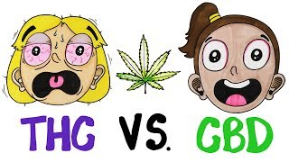 THC vs CBD: What's In Your Weed? width=