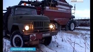 """getlinkyoutube.com-""""Снежная"""" уборка урожая продолжается и в 2015-м"""