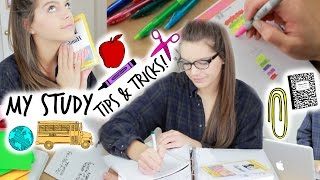 My Study Tips & Tricks! + How to Stay Organized!