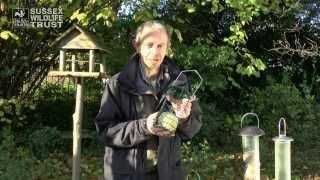 getlinkyoutube.com-Bird Feeding Tips: food and feeders