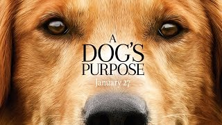 A Dog's Purpose - Official Trailer