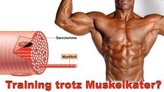 getlinkyoutube.com-Auf den Muskelkater drauf trainieren?