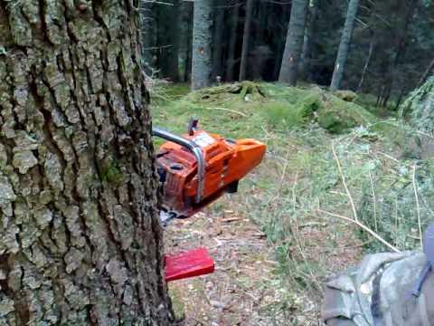 boscaiolo lavori forestali