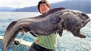 13 BIZARRE Sea Monster Photos Explained