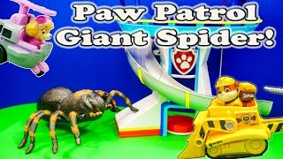 PAW PATROL Nickelodeon Paw Patrol & The Giant Spider a Paw Patrol Toys Video Parody