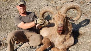 getlinkyoutube.com-Dagestan Tur hunting Azerbaijan 2015 - Ismaily AREA!