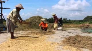 getlinkyoutube.com-Potensi Desa Ngesrep