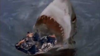 getlinkyoutube.com-Shark Attack 3: Megalodon