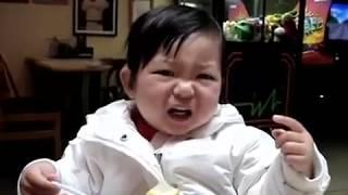 getlinkyoutube.com-Des bébés mange du citron pour la première fois ! .flv
