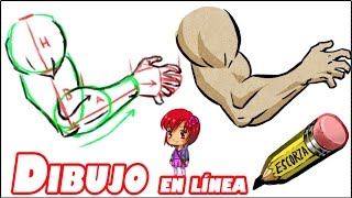 getlinkyoutube.com-El dibujo del brazo básico