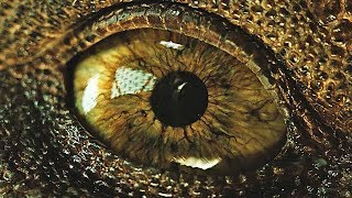 Jurassic World 2: Fallen Kingdom - Awesome | official trailer teaser 2 & 3 (2018)