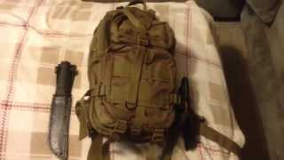 """getlinkyoutube.com-Get Home Bag """" Bug In Not Out"""" : Quick View By Tcarp1616"""