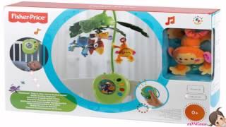 getlinkyoutube.com-Fisher Price Rainforest Peek a Boo Leaves Musical Mobile