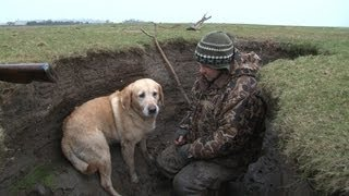 Wildfowling in Scotland