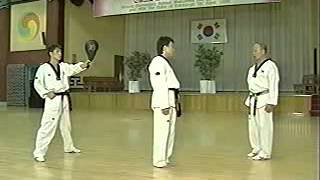 getlinkyoutube.com-Taekwondo - Grand Master Lee Kyu Hyung 2