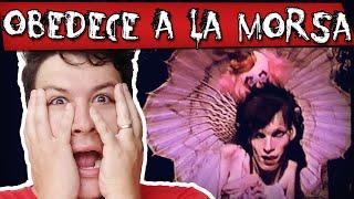 getlinkyoutube.com-Obedece a la Morsa - Tudo sobre este Perturbador Vídeo!