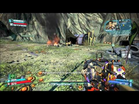 Borderlands 2 Zer0 ECHO Recordings