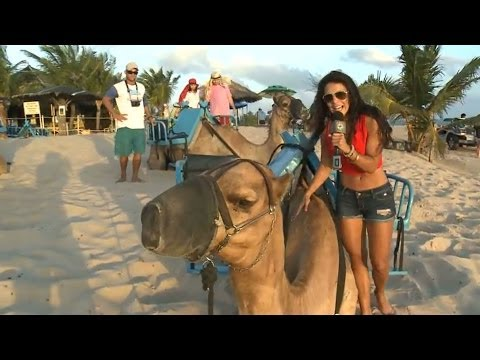 Playas de Natal