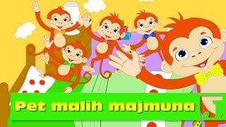 getlinkyoutube.com-Pet malih majmuna | Dečije pesme | Jaccoled