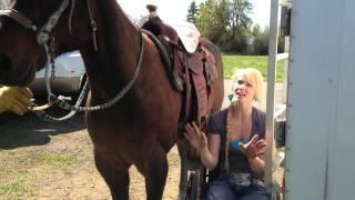 getlinkyoutube.com-WHEELCHAIR WEDNESDAY #25: Lifting myself on my horse from a wheelchair