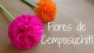 getlinkyoutube.com-Flores de cempasuchitl {FLORES DE PAPEL CREPE} // Dia de muertos