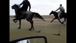 Maştağa atı maşın sürətində