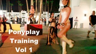 - PonyPlay training guide