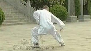 getlinkyoutube.com-Shaolin 7-star kung fu (qi xing quan)