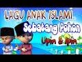 Lagu Anak Muslim Sebatang Pohon |  Upin Ipin - Mari Bersholawat Cover Ainun
