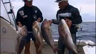 getlinkyoutube.com-Viaggi di pesca2 Rotondaro Sardegna 2a parte lo sconfinamento Traina con il vivo