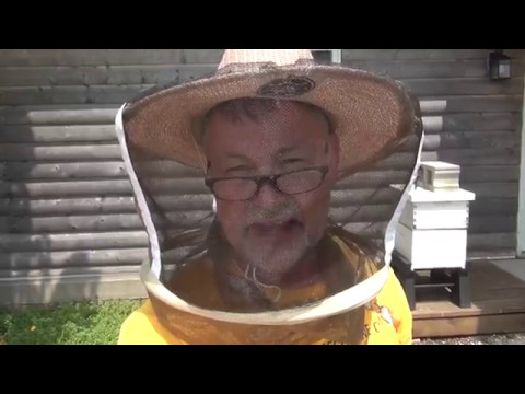 Beekeeping - How To Inspect A Bee Hive and Mark A Queen