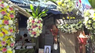 getlinkyoutube.com-งานไม้ดอกไม้ประดับ Chiang Mai flower festival 2014