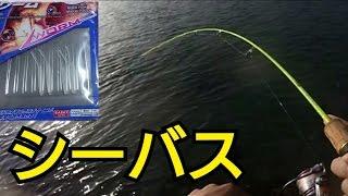 getlinkyoutube.com-鱒レンジャーでシーバスを釣る!in浜名湖