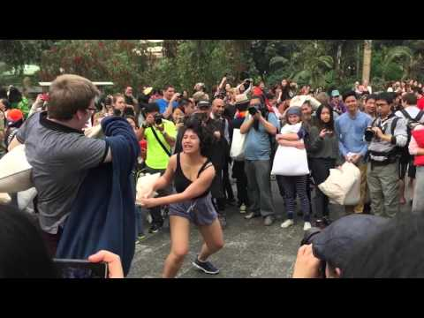 HK Pillow Fight Day