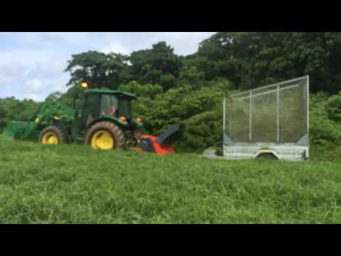 Permaculture compost, Christmas Island