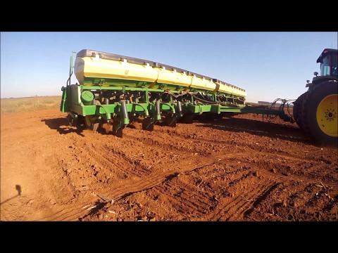 Plantio de milho 2014