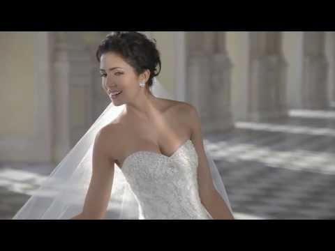 Demetrios  - 2014 wedding