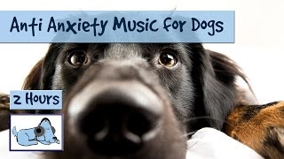 Anti Anxiety Music for Dogs - Cure Separation Anxiety with Dog Music!